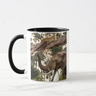 Elephant (Loxodonta) Testing Scent Of Leopard Mug