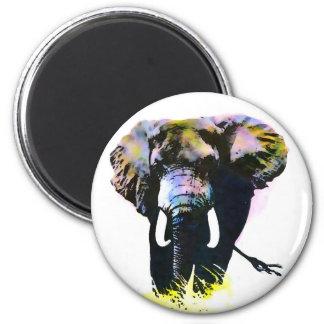 Elephant Fridge Magnets