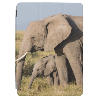 Elephant Mother and Her Baby iPad Air Cover