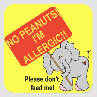 Elephant No Peanuts I'm Allergic Square Sticker