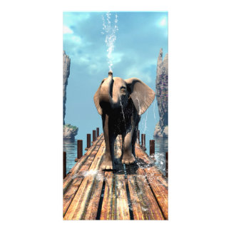Elephant on a jetty over the ocean picture card