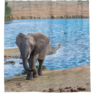 Elephant on the lake shower curtain