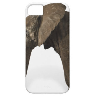Elephant on white background, side view barely there iPhone 5 case