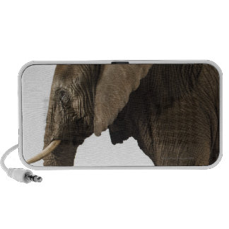 Elephant on white background, side view mini speakers