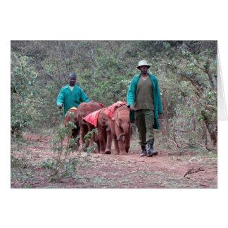 Elephant Orphans & Their Caregivers Card