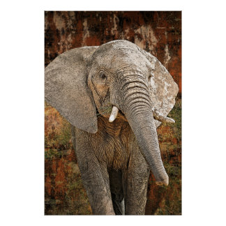 Elephant painting African art HUGE size Poster