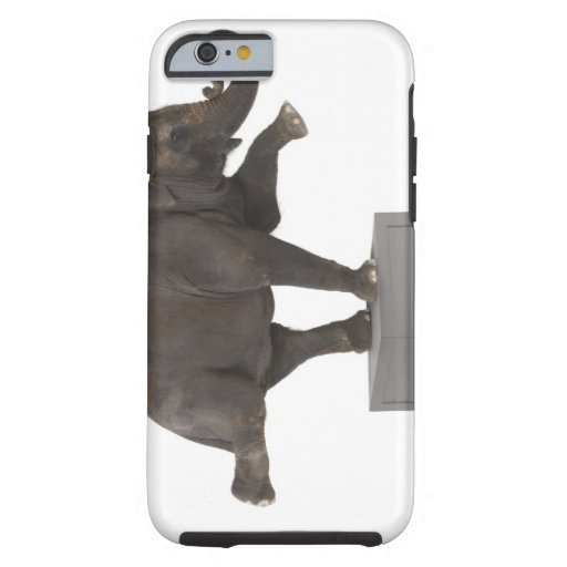 Elephant performing trick on box iPhone 6 case