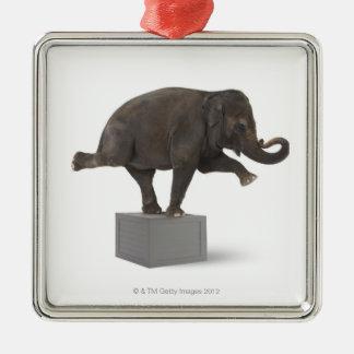 Elephant performing trick on box christmas ornament