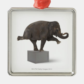 Elephant performing trick on box Silver-Colored square decoration
