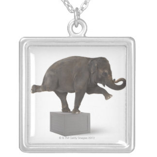 Elephant performing trick on box silver plated necklace