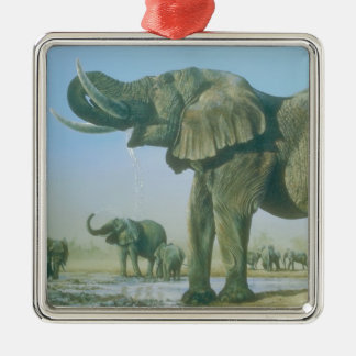 elephant Picture Christmas Ornament