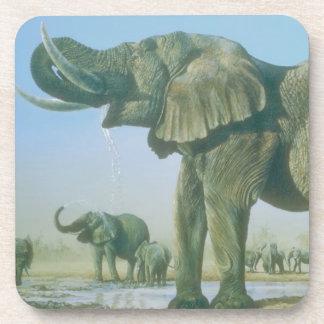 elephant Picture Coaster