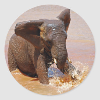 Elephant playing with water round sticker