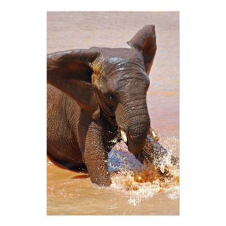 Elephant playing with water stationery