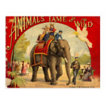 Elephant Red Book Postcard
