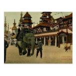 Elephant Ride in Luna Park, Coney Island, 1910 Postcard