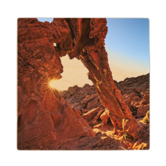 Elephant Rock in the Valley of Fire Wood Coaster