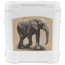 ELEPHANT ROLLER COOLER