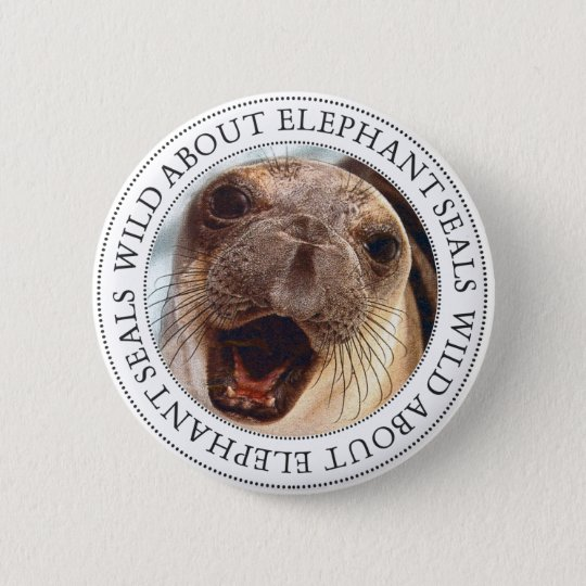 Elephant Seal 6 Cm Round Badge