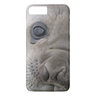 Elephant seal Mirounga leonina) cub in the iPhone 8 Plus/7 Plus Case