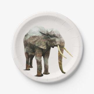 Elephant Transformation Paper Plate