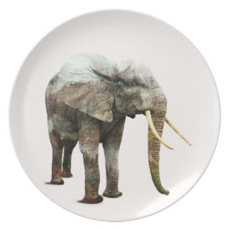 Elephant Transformation Plate