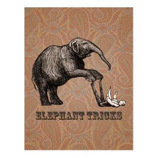 Elephant Tricks - Funny Circus Pachyderm Post Card