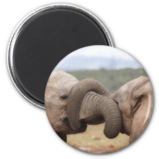 elephant trunks tied up 6 cm round magnet
