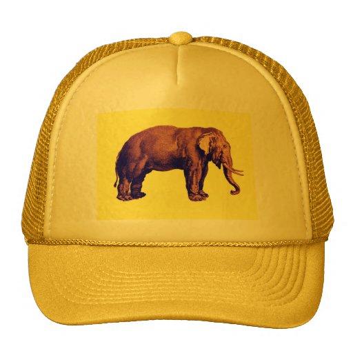 Elephant Vintage Illustration India Animal Antique Trucker Hat