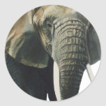 """Elephant"" Wildlife Animal Watercolor Classic Round Sticker"