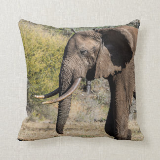 Elephant with Long Tusks Cushion
