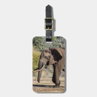 Elephant with Long Tusks Luggage Tag