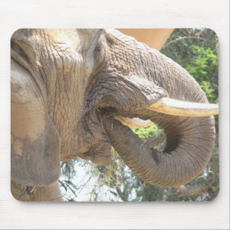 Elephant with Tusks Mouse Pad
