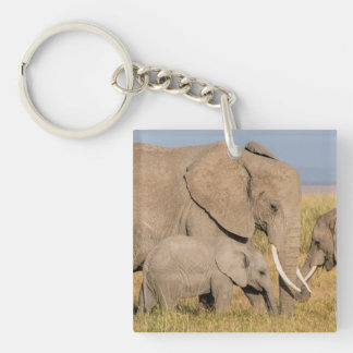 Elephant with Young Key Ring