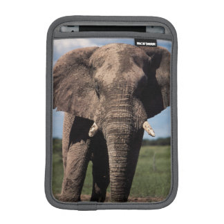 Elephant young male iPad mini sleeve