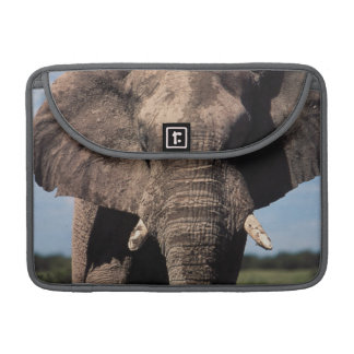 Elephant young male sleeve for MacBooks