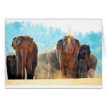 Elephants Animals Safari Destiny Peace Love