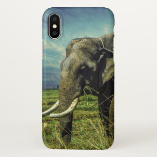 Elephants are the Master of Nature iphone Cover