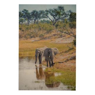 Elephants at a Waterhole Wood Print