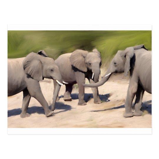 Elephants At Play Postcard