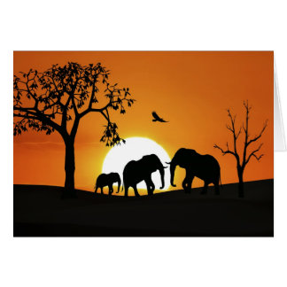 Elephants at sunset card