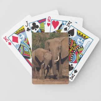 Elephants Bicycle Playing Cards