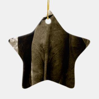 Elephants bottoms christmas ornament