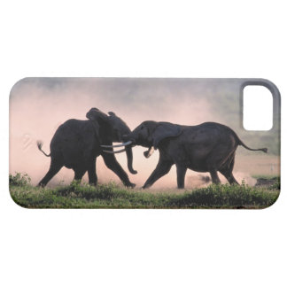 Elephants. Case For The iPhone 5