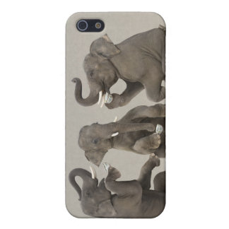 Elephants having tea party iPhone 5 cases