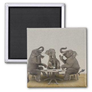 Elephants having tea party magnet