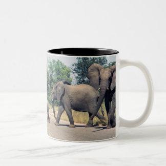 Elephants in Kruger Park Two-Tone Mug
