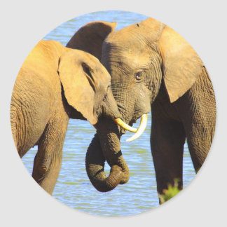 elephants in love classic round sticker