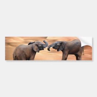 Elephants in the desert bumper sticker