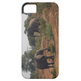 Elephants in the Wild iPhone 5 Covers